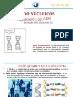 Ácidos Nucleicos 2ªparte Replicación