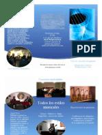 folletodvr2013b