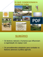 2 Factorescondicionantesdaagricultura 101026070357 Phpapp02