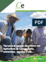 Revista_EnlACe_1.pdf