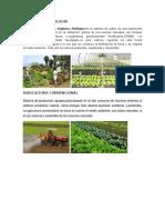 AGRICULTURA ECOLOGÍA