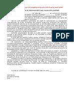 Exemplu de Scrisoare de Angajament Pentru Efectuarea Unui Audit