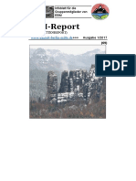EBM-Report 1-17