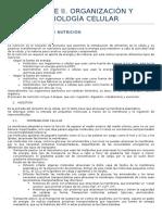 BLOQUE II. Tema 12. Célula Eucariota. Función de Nutrición