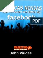 10 Dicas Ninjas Para Divulgar Sua Banda No Facebook-John Viudes