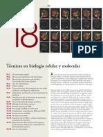 Karp 7a 18 Tecnicas Biologia Molecular
