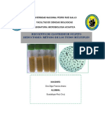 Recuento de Clostridium Sulfito Reductores