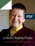Pema Chodron primer - shambhala sun.pdf