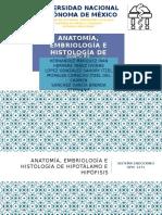 Anatomía, Embriología e Histología de Hipotálamo e Hipófisis.pptx