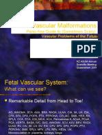 Fetal Vascular Malformations