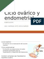 Ciclo Ovárico y Endometrial