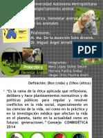 Comportamiento Animal Presentación (1)