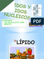 Lipidos y Acidos Nucleicos (Trabajo) - Del Aguila Soto, Oger