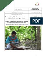 Informe Final _proyecto Artesanía Shipiba_28.02.2013
