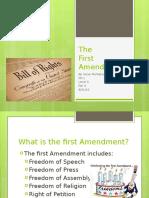 the first amendment  11th