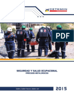 Seguridad y Salud Ocupacional (Procesos Metalurgicos)