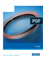 v-ringe.pdf