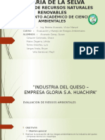 Analisis de riesgo Industria Queso Gloria s.a.