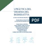 La Practica Del Dharma Del Bodhisattva Ameluna