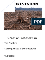 DEFORESTATION.pptx