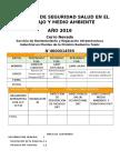Guia Formato de Programa de SST Año 2016 DRT Rev1