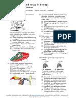 Biology , Respiration System.pdf
