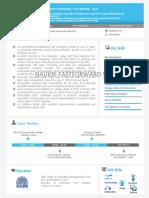 senior-level-visual-cv.pdf