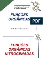 Quimica_Organica_-_Aminas_e_Amidas