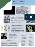 Serotonina infografía