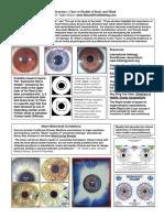 Microsoft Word - IridologyforCD - USER