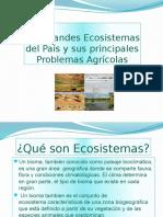biomas-150514002503-lva1-app6892