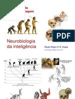 248525957 Neurobiologia Da Inteligencia