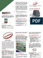 TRIPTICO ULADECH.doc12