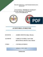 AUDITORIA FORENSE MONOGRAFIA.docx