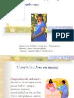 Cambios anatomofisiológicos embarazo