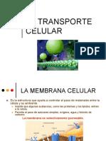 Transporte Celular 2014.Pptx