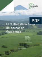 Dialnet-ElCultivoDeLaCanaDeAzucarEnGuatemala-572719.pdf