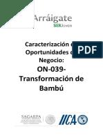 Caracterizacion de Oportunidades de Negocio-On-039-Transformacion de Bambu