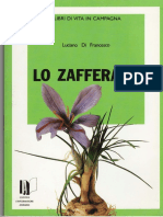Zafferano-dispensa.pdf