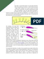 ejemplos de capa límite.docx