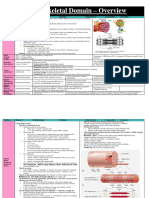 208607364 Musculoskeletal Charts