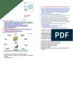 anunt-2015-08-26-01 (2).doc