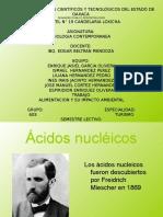 Exposicion de Acidos Nucleicos