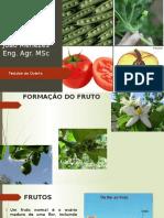 Apresentação - Formação de Sementes - Tecidos Do Ovário
