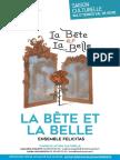DP La Bête Et La Belle VYVS