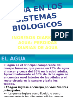 Agua en los Sistemas Biologicos