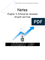 Chapter 3 Enterprise, Business Growth and Size - Google Docs