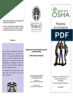 PROSHA_029_Violencia_Lugar_Trabajo (1).pdf