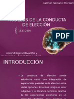Conducta de Eleccion