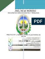 242137368-PRACTICO-Nº1-campos-petroleros-de-Bolivia-docx.docx